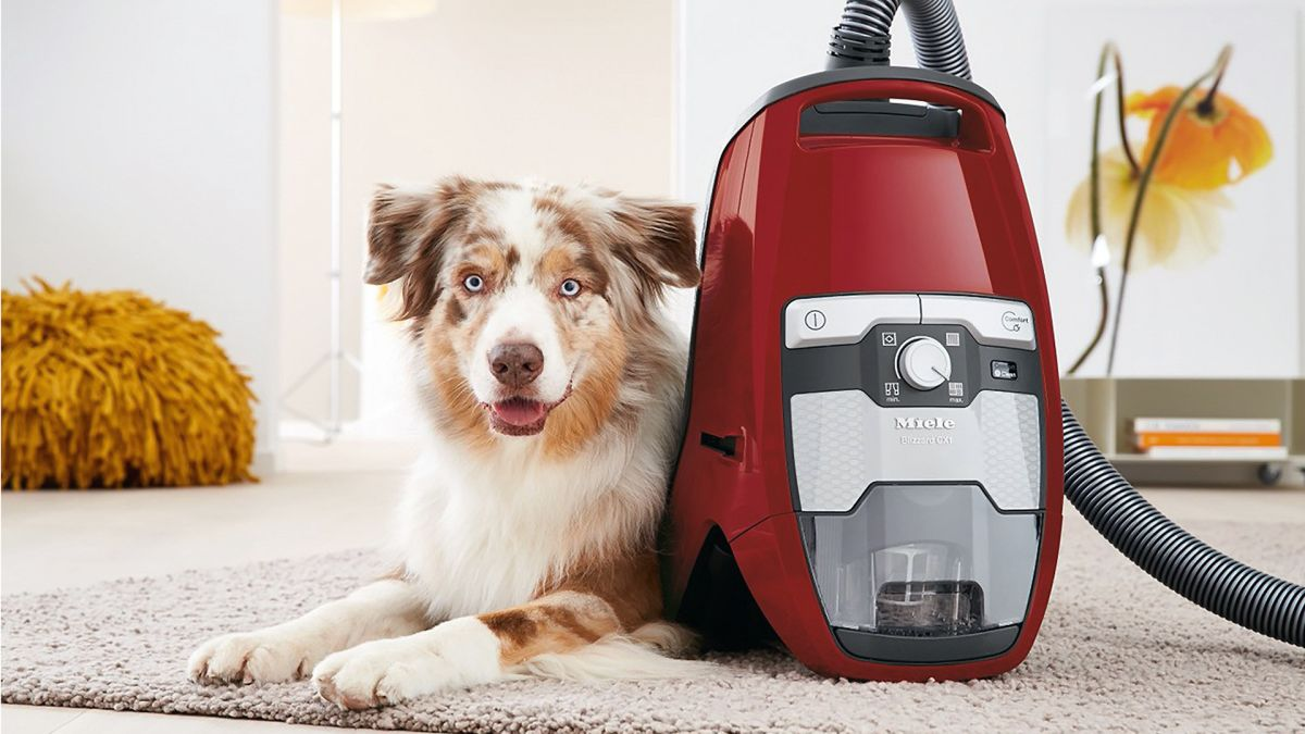 Vacuum-Cleaner-For-Pets-At-Home